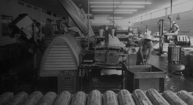 מפעל זוגלובק